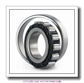 120 mm x 260 mm x 55 mm  NKE NJ324-E-MA6 cylindrical roller bearings