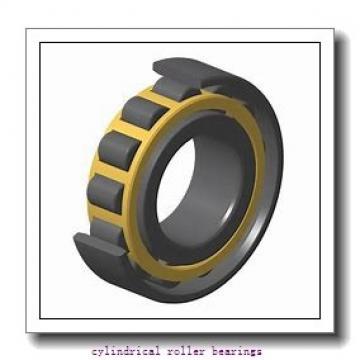 260 mm x 480 mm x 80 mm  NKE NJ252-E-M6 cylindrical roller bearings