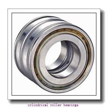 75 mm x 160 mm x 55 mm  NKE NU2315-E-M6 cylindrical roller bearings