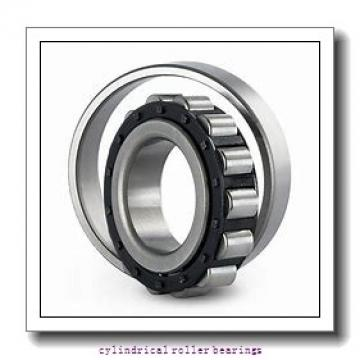 800 mm x 980 mm x 82 mm  NKE NCF18/800-V cylindrical roller bearings