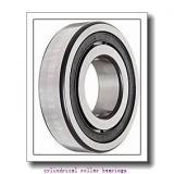 95 mm x 170 mm x 43 mm  NTN NU2219 cylindrical roller bearings